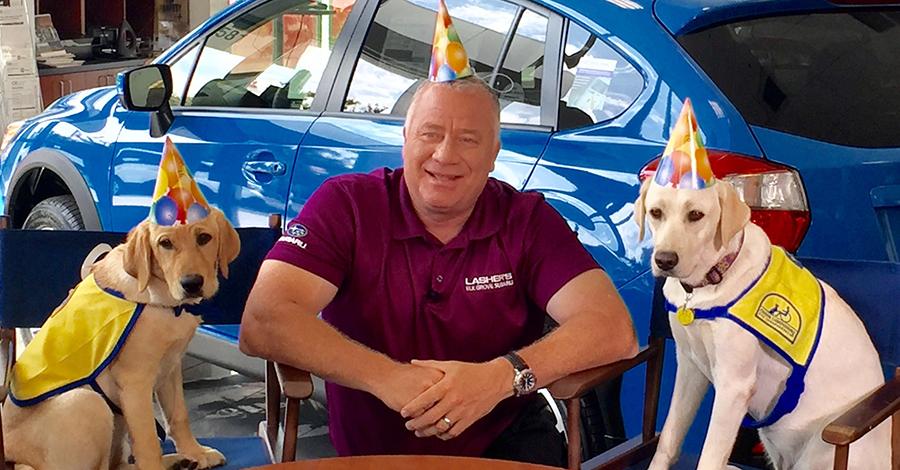 Elk Grove Subaru >> Come Meet Lasher And Subie At Dogfest Elk Grove Subaru